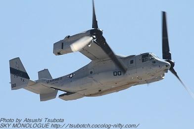Osprey003